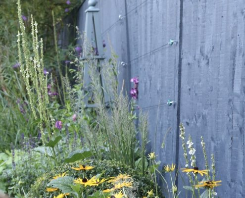 Planting Design and Advice Ilkley Yorkshire Combinations Topiary