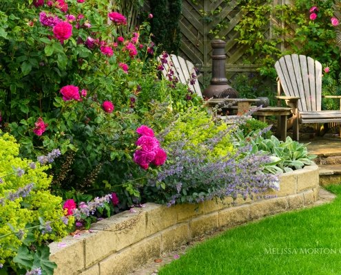 Melissa Morton Garden Designer. Planting design for garden with seating and Adirondack Chairs, Ilkley Yorkshire